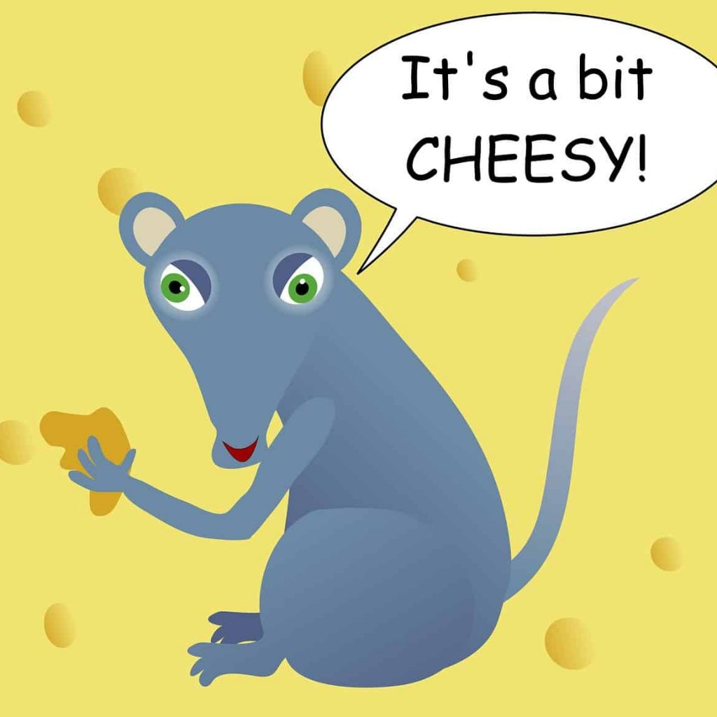 Some stereotypes are true, cheese makes a good mouse trap bait