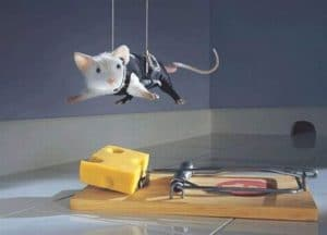 Funny mission impossible mouse trap