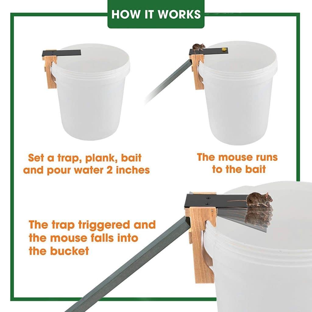Plank mouse trap - Humane bucket mousetrap