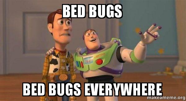 Bed bugs everywhere